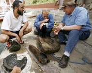 Hallan piezas arqueológicas de diversas épocas en el río Nilo