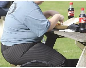 Hay bebés obesos y niños anémicos, según Encuesta Nacional