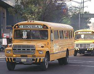 Guanajuato - Alcalde panista regala burros a niños para ir a la escuela en Guanajuato  - Página 2 Bus