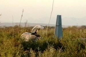 militar -  Accidentes de Aeronaves de la  FAM. Noticias,comentarios,fotos,videos.  Premsa