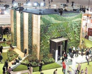 El universal finanzas gracias a plantas de ornato for 10 plantas de ornato