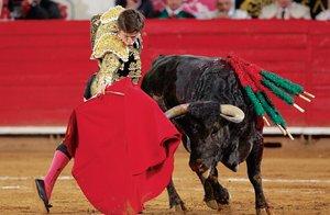 España censura en Twitter intento por vetar los toros