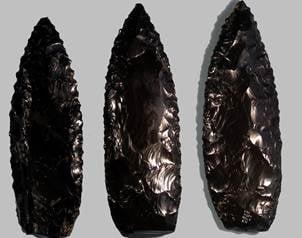 La observaci�n de las partes microsc�picas del cuerpo humano que quedaron adheridas a los cuchillos