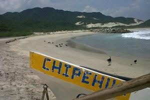 Resultado de imagen para chipehua