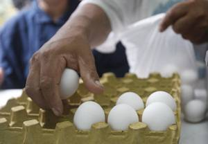Se otorgaron ocho mil 838 certificados zoosanitarios de movilizaci�n para agilizar el abasto de pro