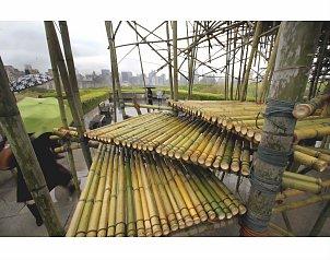 Bamb material alternativo en la construcci n udual press - Material construccion barato ...