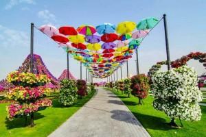 El jardín natural más grande del mundo en Dubai