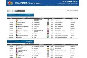 Menos de 20 días después de la final arrancará el Clausura 2014.