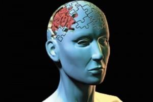 10 pasos para mantener la memoria en perfecto estado