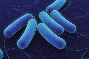 """Hallan """" superbacteria"""" en sede olímpica de Río"""