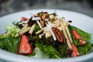 Dieta ovolactovegetariana ventajas y desventajas