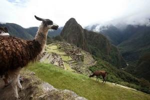 8 tips para viajar a Machu Picchu