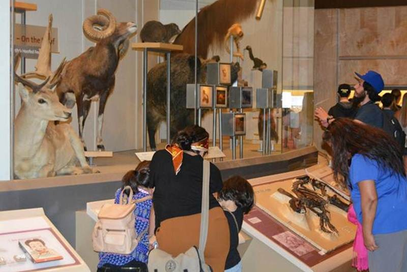 Museo de Historia Natural recibe a familias hispanas